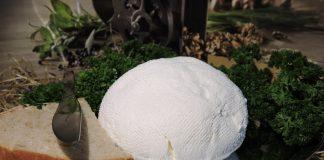 От 2 литра мляко правя 1 кг домашно сирене: без закваска и лимонтузу, яде се след 4 часа!