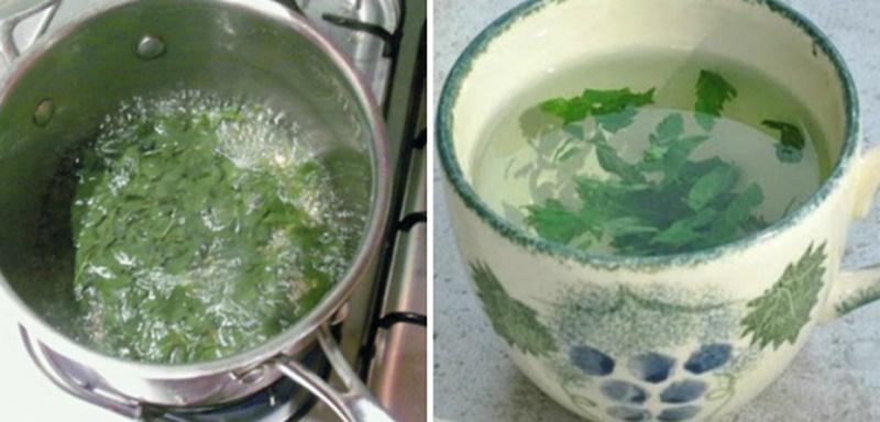 Магданоз! Първо започна да го пие сестра ми, но като видях ефекта, започнах и аз! Невероятно, винаги съм мислела, че се използва само за салати!