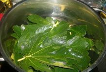 Тези листа са 100 пъти по- мощни от чесъна и джинджифила. Топят тлъстините като с магическа пръчка!